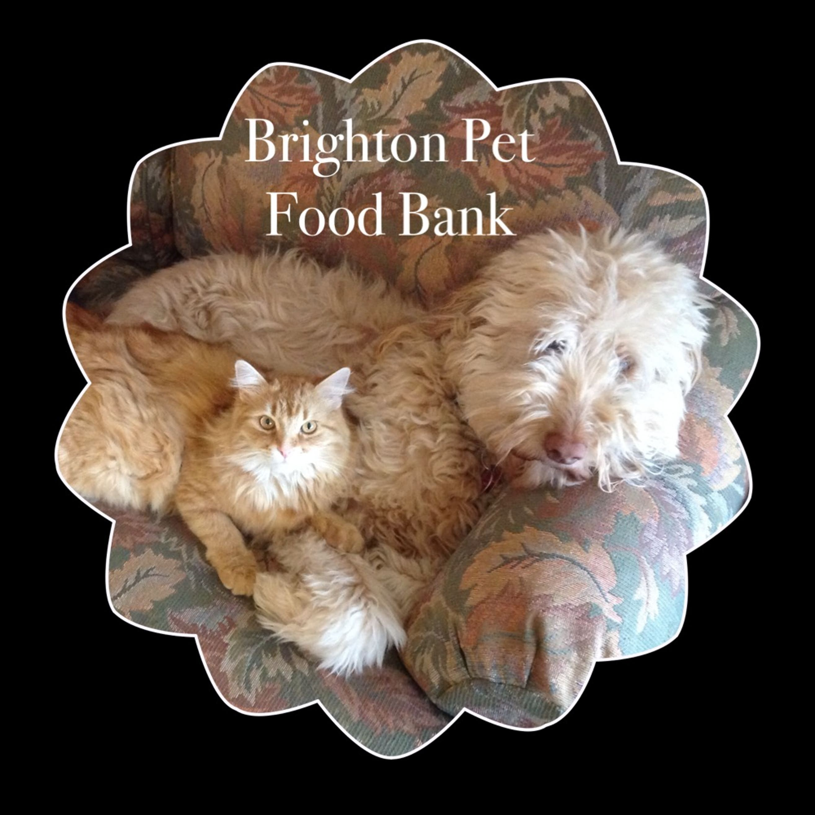 Brighton Pet Food Bank
